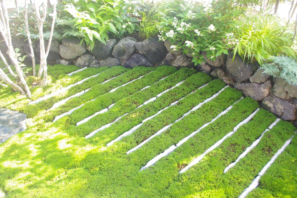 大浦邸 苔の庭 ひかるガーデンズ